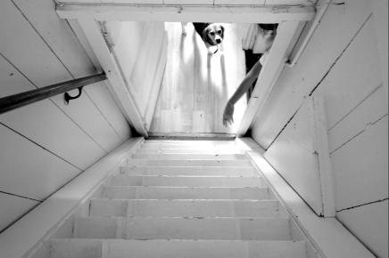 786studio | Janneke Schrey | Kim de Boer | fotografie | photography | Jane